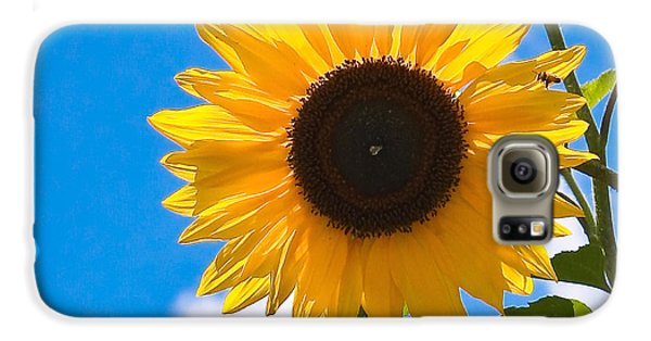 Sunflower And Bee At Work Galaxy S6 Case