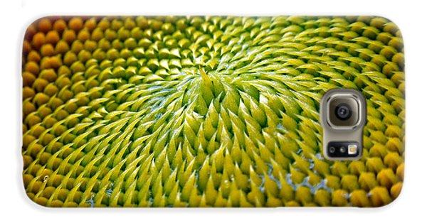 Sunflower Galaxy S6 Case - Sunflower  by Christina Rollo