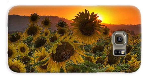 Mountain Sunset Galaxy S6 Case - Sunflower Sun Rays by Mark Kiver