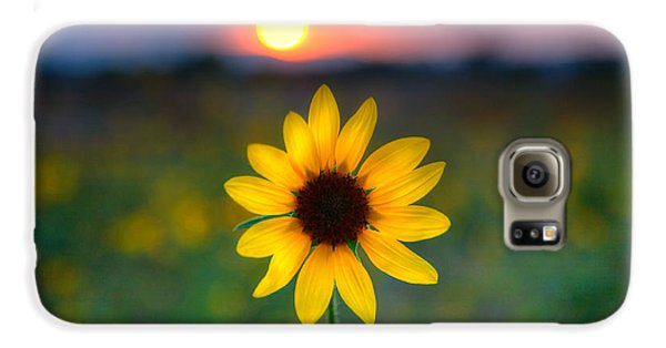 Sunflower Sunset Galaxy S6 Case by Peter Tellone