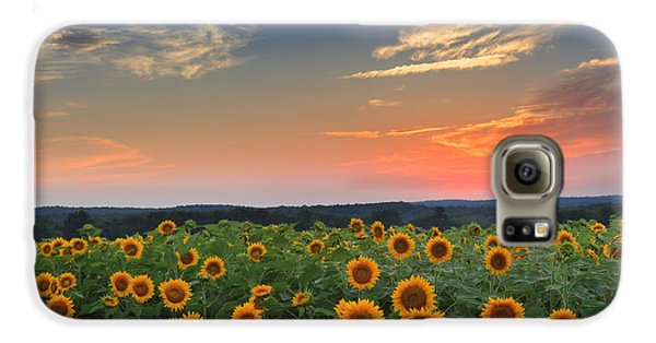 Sunflowers In The Evening Galaxy S6 Case