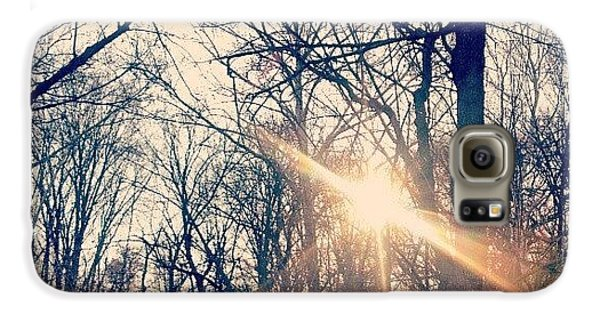 Sunlight Through The Trees Galaxy S6 Case by Genevieve Esson