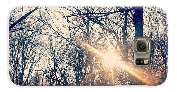 Sunlight Through The Trees Galaxy S6 Case