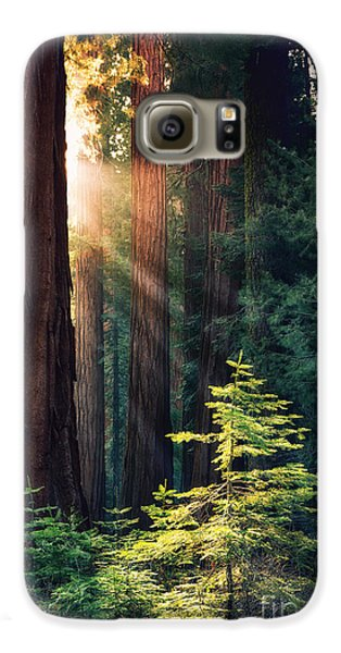 Sunlit From Heaven Galaxy S6 Case
