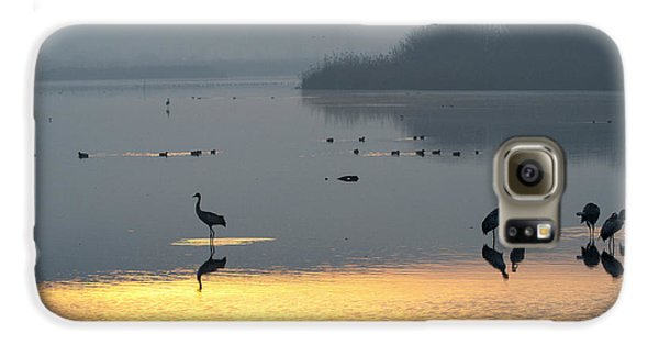 Sunrise Over The Hula Valley Israel 1 Galaxy S6 Case by Dubi Roman