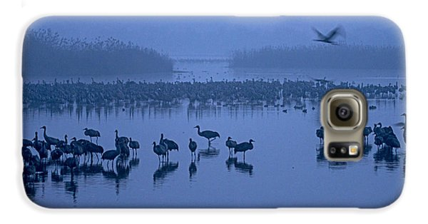 Sunrise Over The Hula Valley Israel 4 Galaxy S6 Case by Dubi Roman