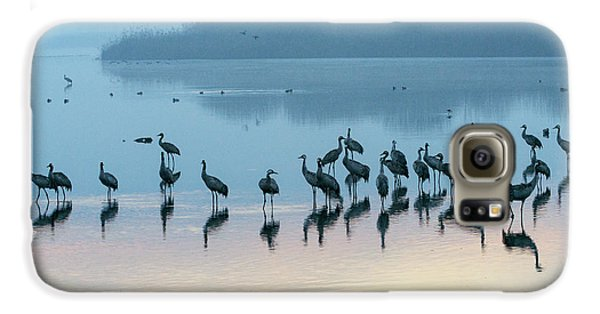 Sunrise Over The Hula Valley Israel 5 Galaxy S6 Case by Dubi Roman