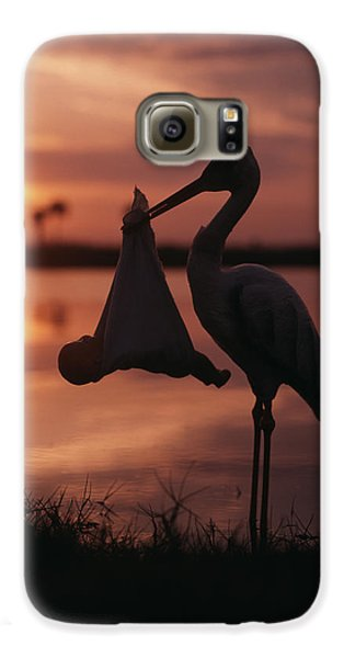 Sunrise Silhouette Of Stork Carrying Galaxy S6 Case