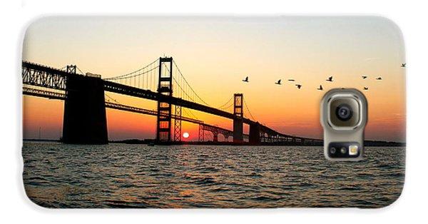 Goose Galaxy S6 Case - Sunset Flight by Jennifer Casey