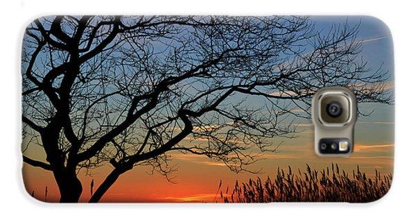 Sunset Tree In Ocean City Md Galaxy S6 Case