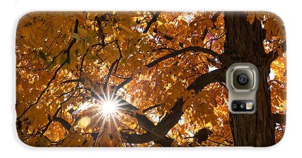 Sunshine Gold Galaxy S6 Case
