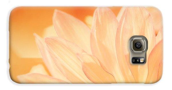Daisy Galaxy S6 Case - Sunshine by Scott Norris