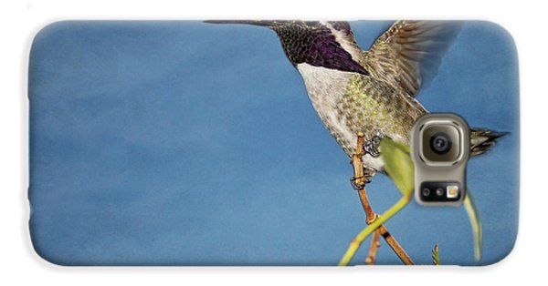 Taking Flight Galaxy S6 Case by Peggy Hughes