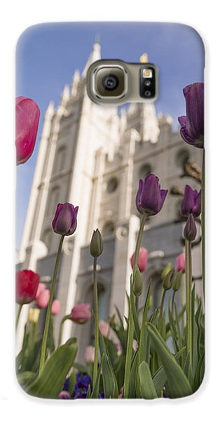 Tulip Galaxy S6 Case - Temple Tulips by Chad Dutson
