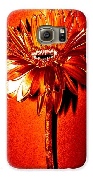 Tequila Sunrise Zinnia Galaxy S6 Case by Sherry Allen
