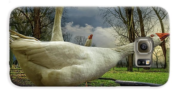 The 3 Geese Galaxy S6 Case