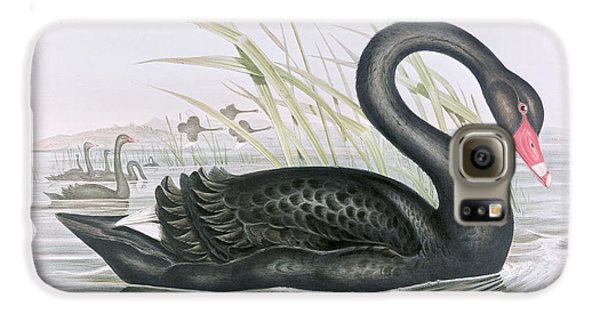 The Black Swan Galaxy S6 Case by John Gould