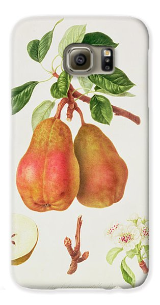 The Chaumontelle Pear Galaxy S6 Case