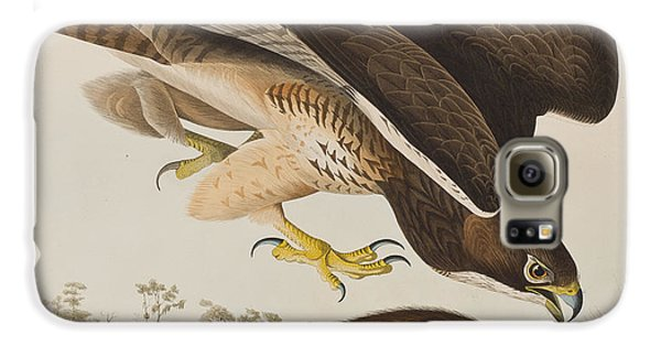 The Common Buzzard Galaxy S6 Case by John James Audubon