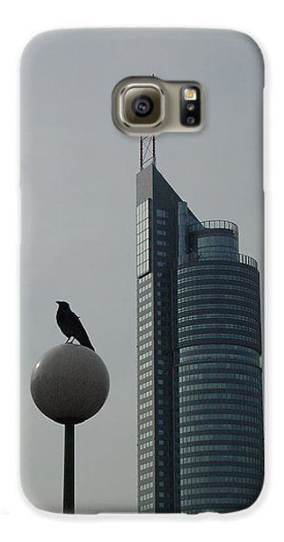 The Crow And The Milleniumtower In Winter Galaxy S6 Case