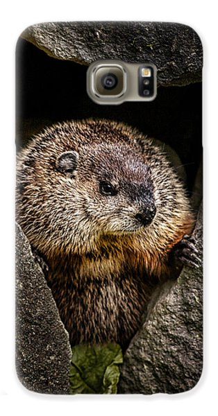 The Groundhog Galaxy S6 Case by Bob Orsillo