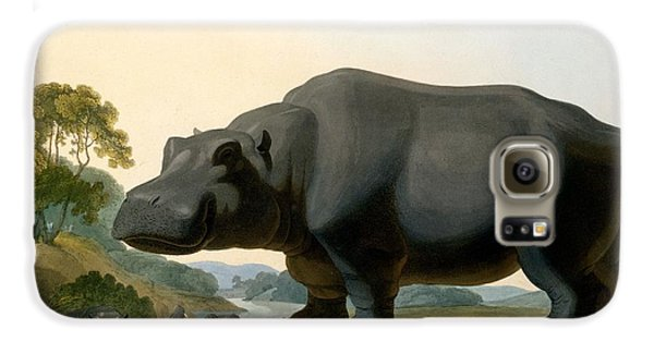 The Hippopotamus, 1804 Galaxy S6 Case by Samuel Daniell