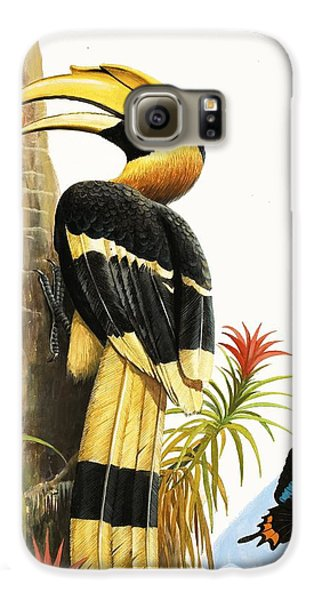 Toucan Galaxy S6 Case - The Hornbill by RB Davis