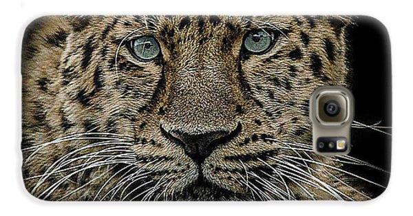 Leopard Galaxy S6 Case - The Interrogator  by Paul Neville