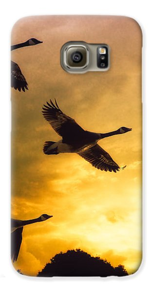 The Journey South Galaxy S6 Case by Bob Orsillo