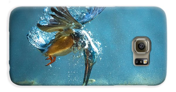 The Kingfisher Galaxy S6 Case