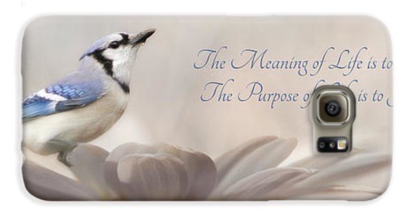 Bluejay Galaxy S6 Case - The Meaning Of Life by Lori Deiter