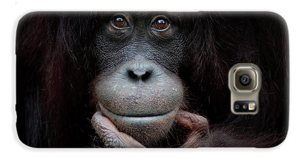Ape Galaxy S6 Case - The Mirror Image by Antje Wenner-braun
