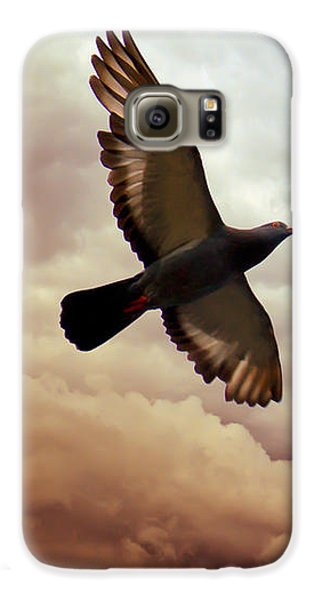 Pigeon Galaxy S6 Case - The Pigeon by Bob Orsillo