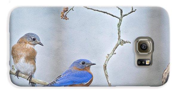 The Presence Of Bluebirds Galaxy S6 Case