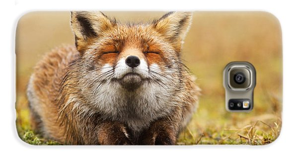 The Smiling Fox Galaxy S6 Case by Roeselien Raimond