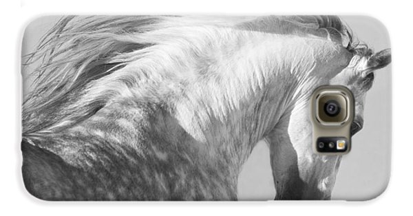 Horse Galaxy S6 Case - The Spanish Stallion Tosses His Head by Carol Walker