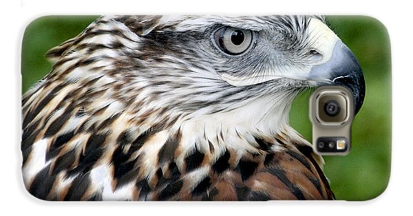The Threat Of A Predator Hawk Galaxy S6 Case