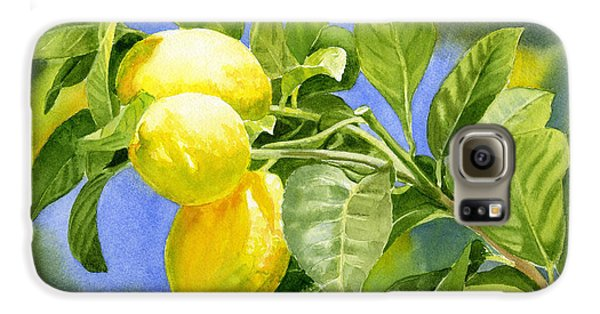 Three Lemons Galaxy S6 Case by Sharon Freeman