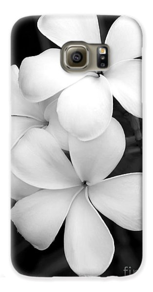Orchid Galaxy S6 Case - Three Plumeria Flowers In Black And White by Sabrina L Ryan