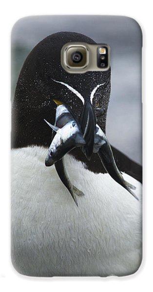 Feeding Time... Galaxy S6 Case by Nina Stavlund