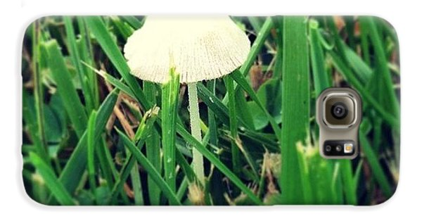 Green Galaxy S6 Case - Tiny Mushroom In Grass #mushroom #grass by Marianna Mills
