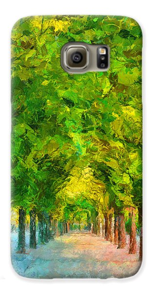 Tree Avenue In The Vienna Augarten Galaxy S6 Case