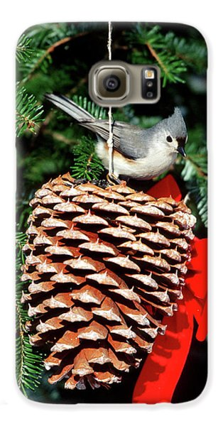Titmouse Galaxy S6 Case - Tufted Titmouse (baeolophus Bicolor by Richard and Susan Day