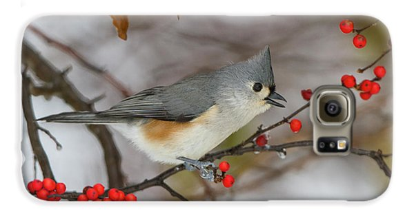 Titmouse Galaxy S6 Case - Tufted Titmouse (parus Bicolor by Richard and Susan Day