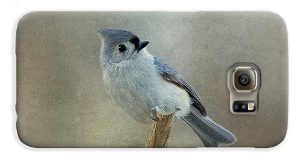 Titmouse Galaxy S6 Case - Tufted Titmouse Watching by Sandy Keeton