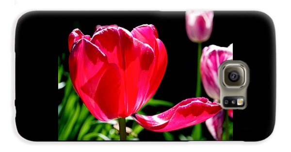 Tulip Extended Galaxy S6 Case by Rona Black