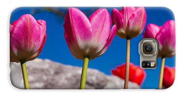 Tulip Galaxy S6 Case - Tulip Revival by Chad Dutson