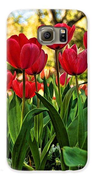Tulip Time Galaxy S6 Case by Peggy Hughes