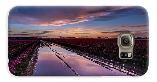 Tulips And Purple Skies Galaxy S6 Case by Mike Reid