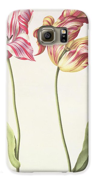 Tulips Galaxy S6 Case by Nicolas Robert